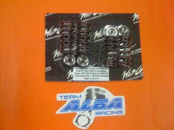 Beehive valve springs for RZR 800